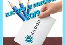 ELECCIÓN DE DELEGADOS 2019